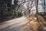 Battle Road 004.jpg