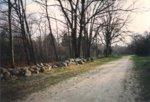 Battle Road 005.jpg