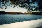 Walden Pond1.JPG