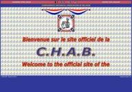 Confederate Historical Association of Belgium